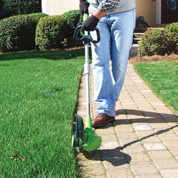 edging a walkway near your house
