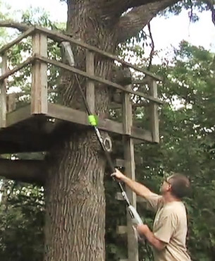 pruning a tree using the Earthwise pole saw
