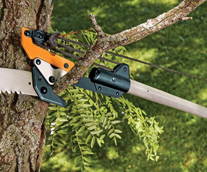 cutting smaller branches with the lopper