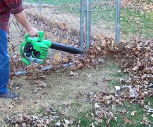 dealing with piles of leaves
