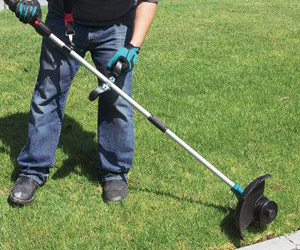 using the edger function
