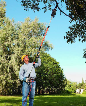 man pruning a tree using the RM1025SPS