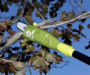 cutting a branch using the SunJoe pole saw