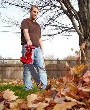 blowing leaves away using the Toro 51619