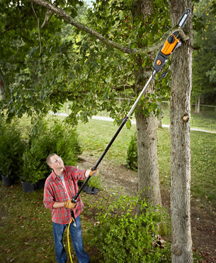 man cutting a branch using the WG309